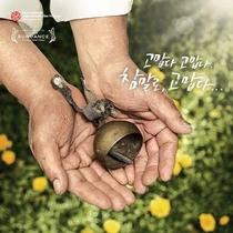 Velho Amigo - Poster / Capa / Cartaz - Oficial 1