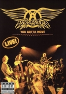 Aerosmith - You Gotta Move (Aerosmith: You Gotta Move)