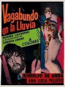 Vagabundo en La Lluvia - Poster / Capa / Cartaz - Oficial 1