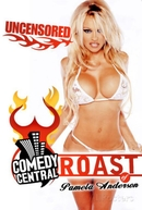 Roast of Pamela Anderson (Roast of Pamela Anderson)