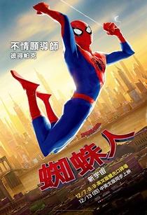 Homem-Aranha no Aranhaverso - Poster / Capa / Cartaz - Oficial 15