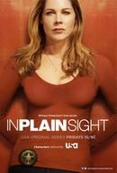 Testemunha Ocular (5ª Temporada) (In plain sight)