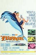O Menino e o Delfim (Flipper)