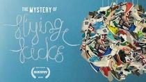 The Mistery of Flying Kicks - Poster / Capa / Cartaz - Oficial 1