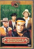 Bonanza: A Selvagem