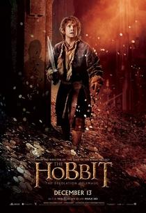 O Hobbit: A Desolação de Smaug - Poster / Capa / Cartaz - Oficial 10