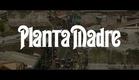 Planta madre, de Gianfranco Quattrini - Trailer