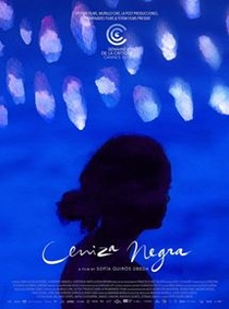 Terra das Cinzas - Poster / Capa / Cartaz - Oficial 1