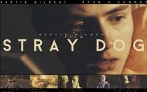 Stray Dog - Poster / Capa / Cartaz - Oficial 1