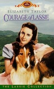 A Coragem de Lassie - Poster / Capa / Cartaz - Oficial 3