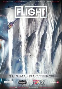 The Art of Flight - Poster / Capa / Cartaz - Oficial 1