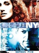 CSI: Nova York (5ª Temporada) (CSI: NY (Season 5))