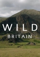 Grã-Bretanha selvagem (Wild Britain)