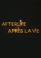 Afterlife (Afterlife)