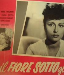 Il Fiore Sotto Gli Occhi  - Poster / Capa / Cartaz - Oficial 1
