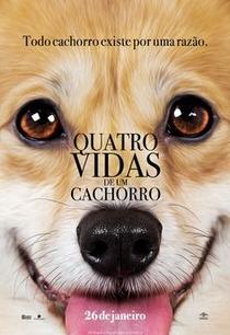 Quatro Vidas de Um Cachorro - Poster / Capa / Cartaz - Oficial 8