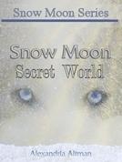 Snow Moon: Secret World (Snow Moon: Secret World)