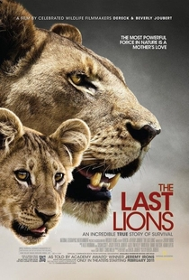 Os Últimos Leões - Poster / Capa / Cartaz - Oficial 1