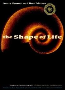 Origens da Vida - Poster / Capa / Cartaz - Oficial 1