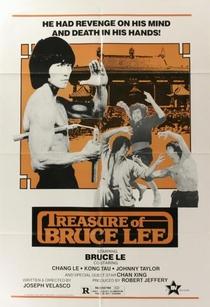 Treasure of Bruce Le - Poster / Capa / Cartaz - Oficial 1