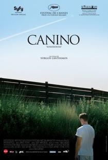Dente Canino - Poster / Capa / Cartaz - Oficial 5