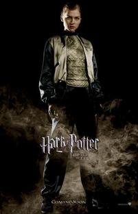 Harry Potter e o Cálice de Fogo - Poster / Capa / Cartaz - Oficial 15