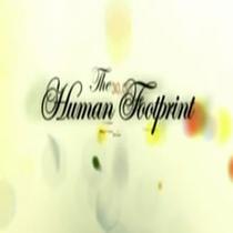 As Marcas da Humanidade - Poster / Capa / Cartaz - Oficial 1