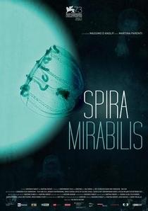 Spira Mirabilis - Poster / Capa / Cartaz - Oficial 1
