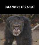 Planeta dos Macacos - O Confronto Apresenta - Island of The Apes (Dawn of The Planet of The Apes Presents - Island of The Apes)