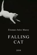 Falling Cat (Falling Cat)