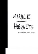 Marble Hornets (1ª Temporada)