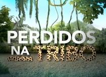 Perdidos Na Tribo (1º Temporada) - Poster / Capa / Cartaz - Oficial 1