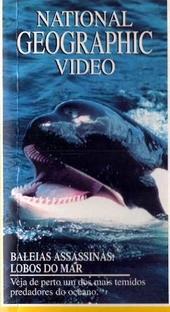 National Geographic Video - Baleias Assassinas: Lobos do Mar - Poster / Capa / Cartaz - Oficial 1