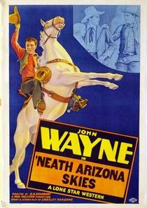 Sob o Sol do Arizona - Poster / Capa / Cartaz - Oficial 4