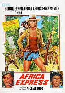 Expresso da Africa - Poster / Capa / Cartaz - Oficial 3