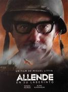 Allende em seu labirinto (Allende en su laberinto)