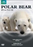 Urso Polar - Espiões na Neve (Polar Bears: Spy on the Ice)