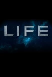 Vida - Poster / Capa / Cartaz - Oficial 5