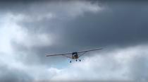 Mico Leão Voador em ação no velho Chico - Poster / Capa / Cartaz - Oficial 1