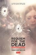 Réquiem Pelos Mortos: Primavera Americana (Requiem 2014: An American Spring)