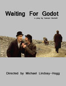 Esperando Godot (Waiting for Godot)