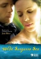 Vasto Mar de Sargaços (Wide Sargasso Sea)