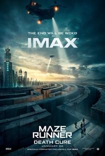 Maze Runner: A Cura Mortal - Poster / Capa / Cartaz - Oficial 6