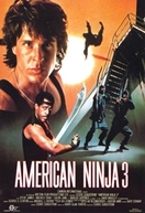 American Ninja 3: O Dragão Americano
