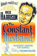 O Passado do Meu Marido (The Constant Husband)