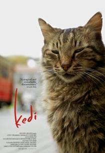 Gatos - Poster / Capa / Cartaz - Oficial 1