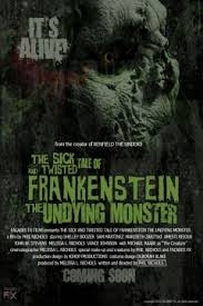 The Sick and Twisted Tale of Frankenstein - Poster / Capa / Cartaz - Oficial 1