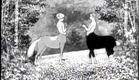 The Centaurs (1921) - Winsor McCay