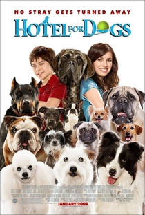 Um Hotel Bom Pra Cachorro - Poster / Capa / Cartaz - Oficial 1