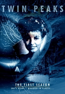Twin Peaks (1ª Temporada) - Poster / Capa / Cartaz - Oficial 4